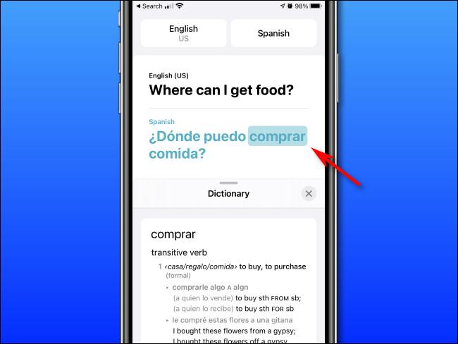 En mode Dictionnaire d'Apple Translate sur iPhone, vous pouvez appuyer sur les mots pour voir leurs définitions.