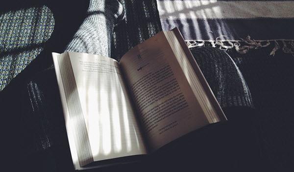 lecteur de livres