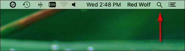Cliquez sur l'icône en forme de loupe dans la barre de menus pour lancer la recherche Spotlight.