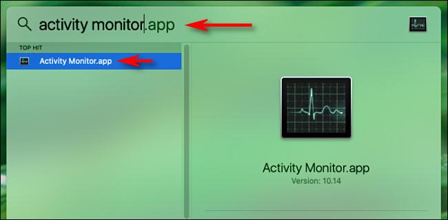 """Ouvrez Spotlight Search sur Mac et tapez """"Activity Monitor"""" puis appuyez sur Retour."""