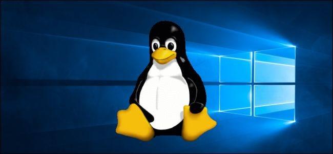 La mascotte Tux de Linux sur Windows 10
