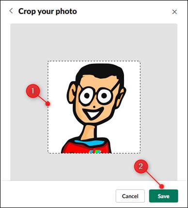Déplacez les lignes pointillées pour recadrer votre image, puis cliquez sur Enregistrer.