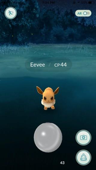 pokemon-encens-evee