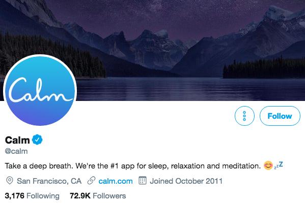 Biographie Twitter pour Calm