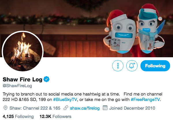 Biographie Twitter pour Shaw Fire Log
