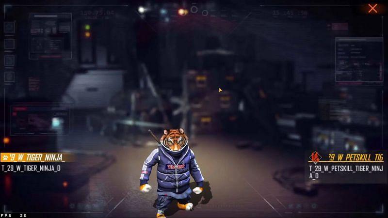 Animal de compagnie Sensei Tig dans le serveur Advance (Image via Moniez Gaming)
