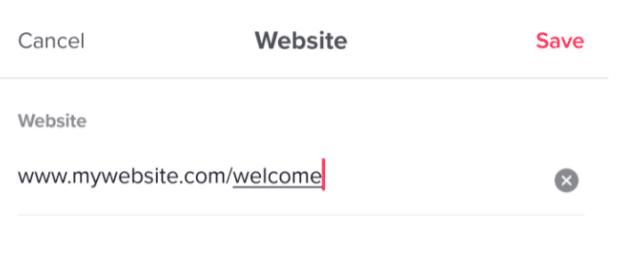 entrez l'URL sous le site Web